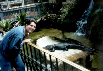 Steve with the crocodile