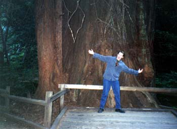 Zack at Muir Woods