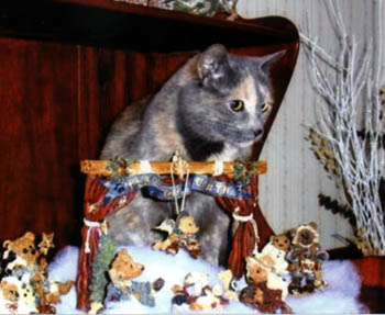Molly with a Nativity scene