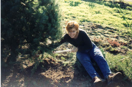 Anne cutting down our Christmas tree