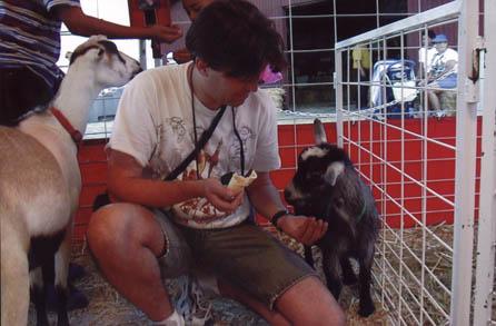 Steve feeding a goat