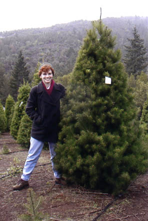Anne with Christmas tree