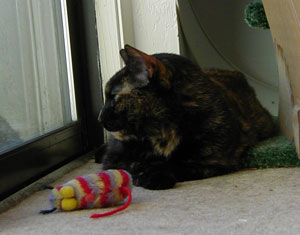 Yep, there's her mousie, 10 years and 5 addresses later. (2/22/2003)