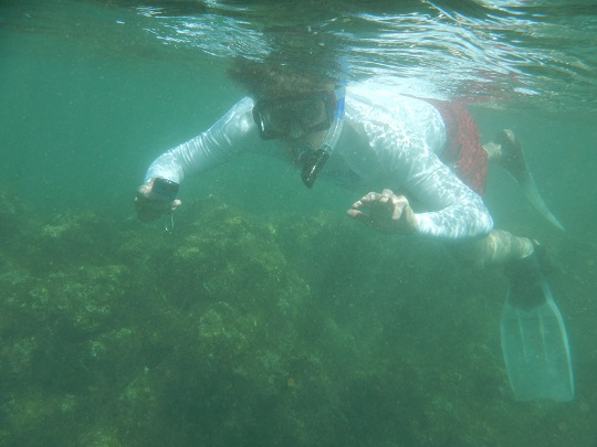 Steve snorkeling on Na Pali Coast