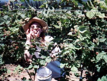 Anne eating blackberries