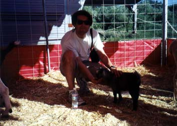 Steve with a goat at the Marin County Fair