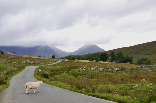 road to Elgol