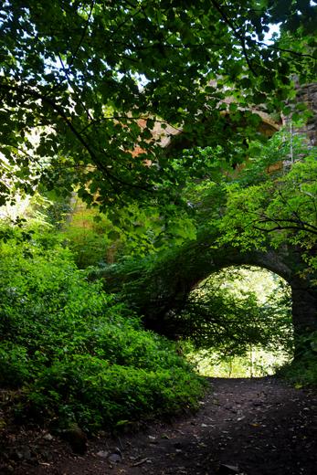 path to Roslin Glen