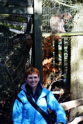 Anne with Scottish Wildcat at Highland Wildlife Park