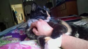 Missy grabbing my hand