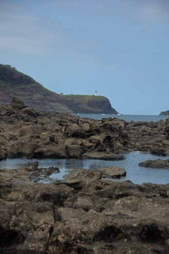 Kilauea Lighthouse in distance