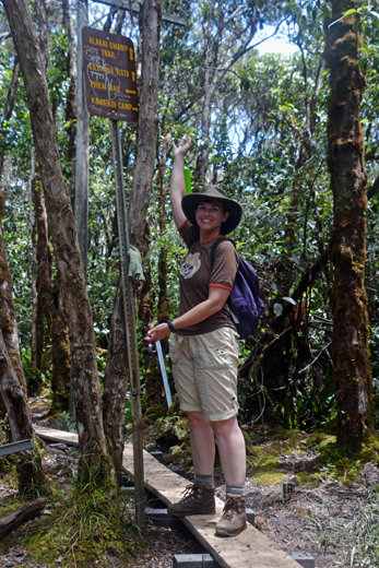 Anne at junction of Alakai Swamp Trail and Pihea Trail