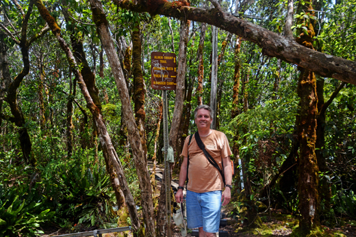Steve at junction of Alakai Swamp Trail and Pihea Trail