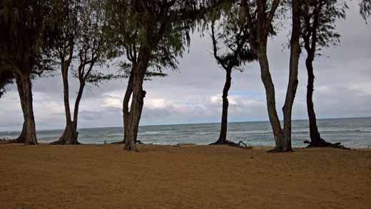 View from Lava Lava Beach Club