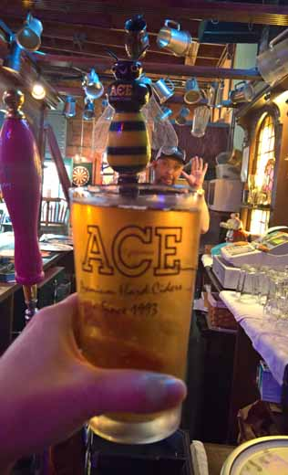 pint of Apple Honey Ace Cider