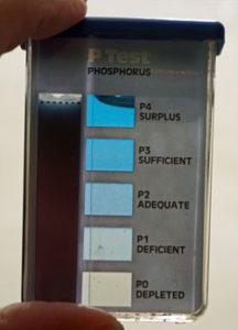 phosphorusweb