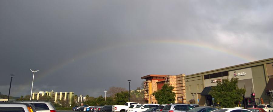 rainbow---WP_20190204_14_45_50_Pro